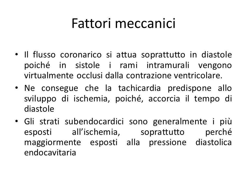 Fattori meccanici
