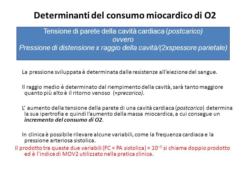 Determinanti del consumo miocardico di O2