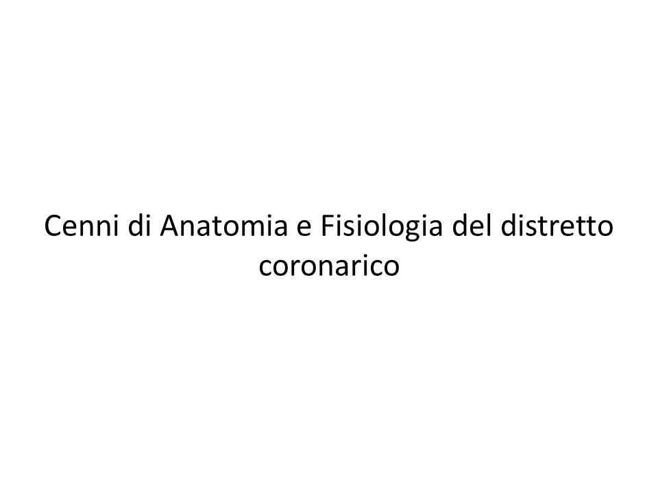 Cenni di Anatomia e Fisiologia del distretto coronarico