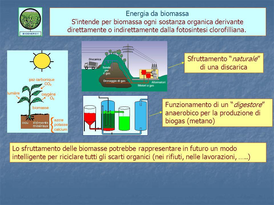 S intende per biomassa ogni sostanza organica derivante