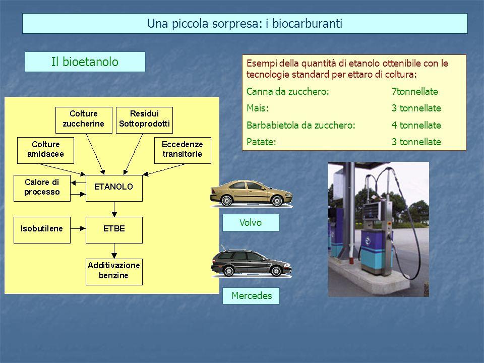 Una piccola sorpresa: i biocarburanti