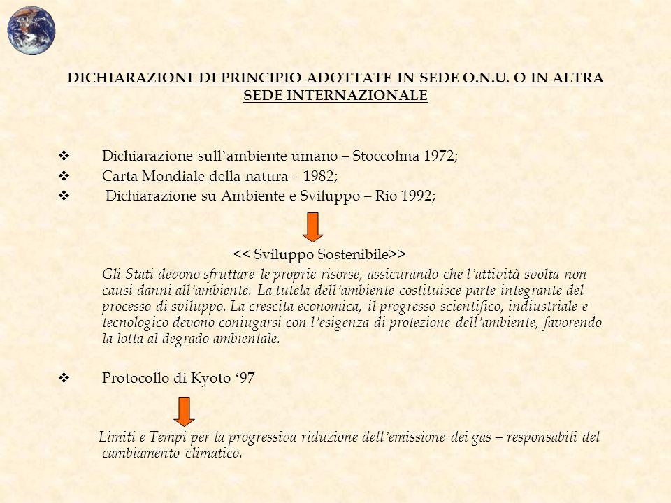 DICHIARAZIONI DI PRINCIPIO ADOTTATE IN SEDE O. N. U
