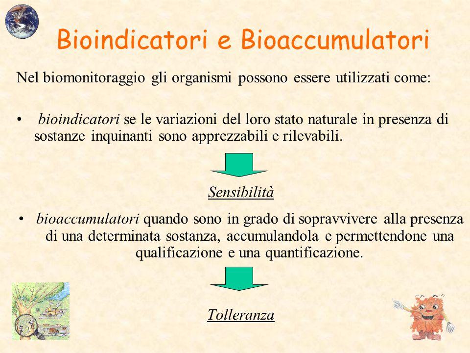 Bioindicatori e Bioaccumulatori