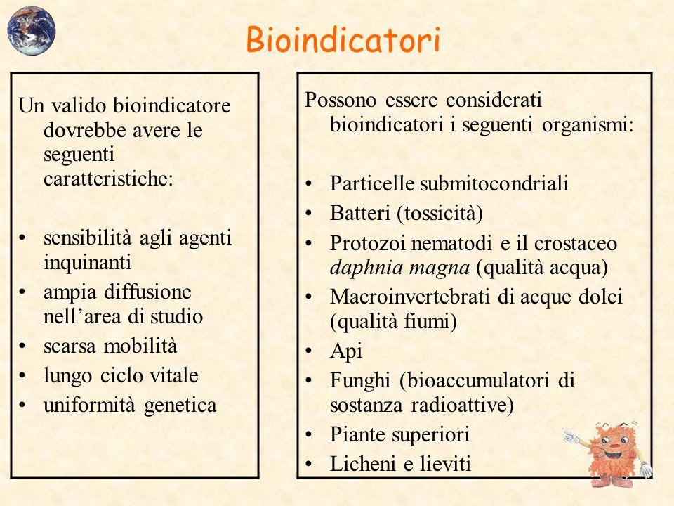 Bioindicatori Possono essere considerati bioindicatori i seguenti organismi: Particelle submitocondriali.