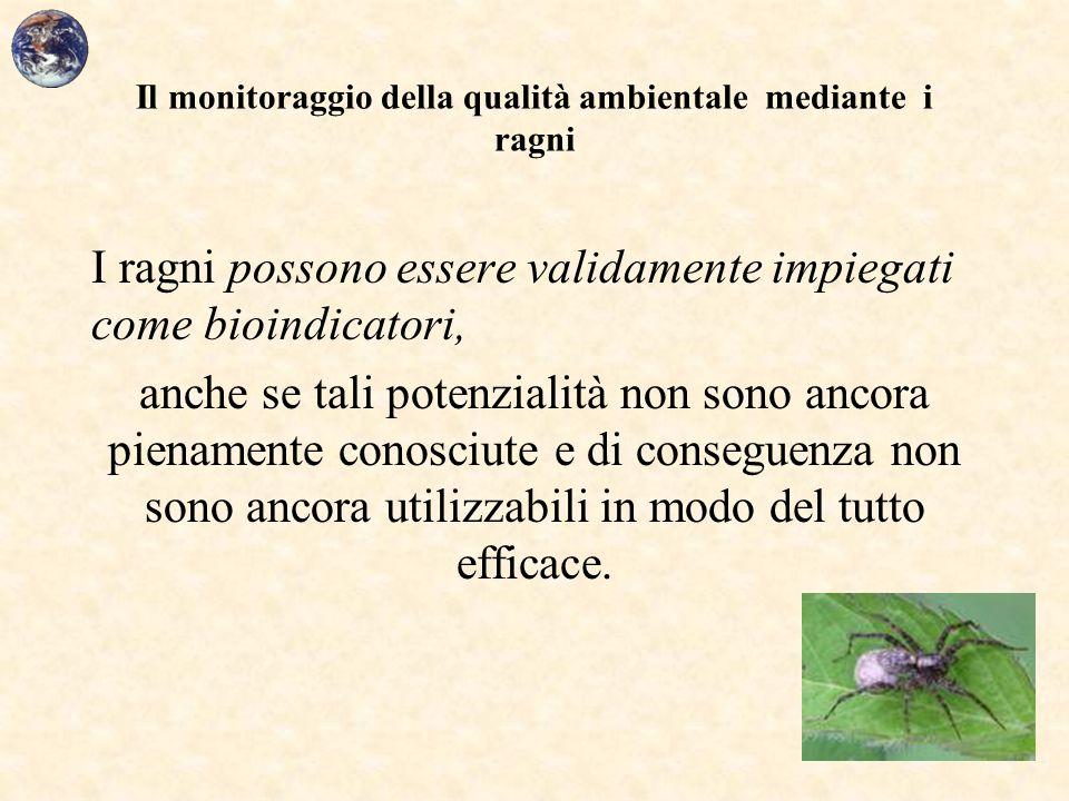 Il monitoraggio della qualità ambientale mediante i ragni