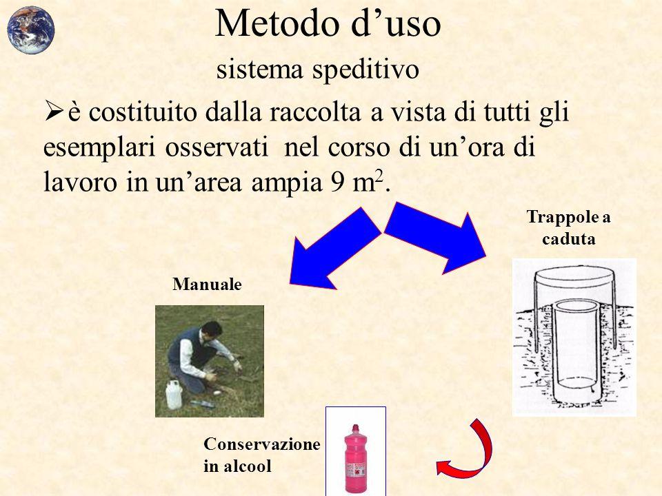 Metodo d'uso sistema speditivo