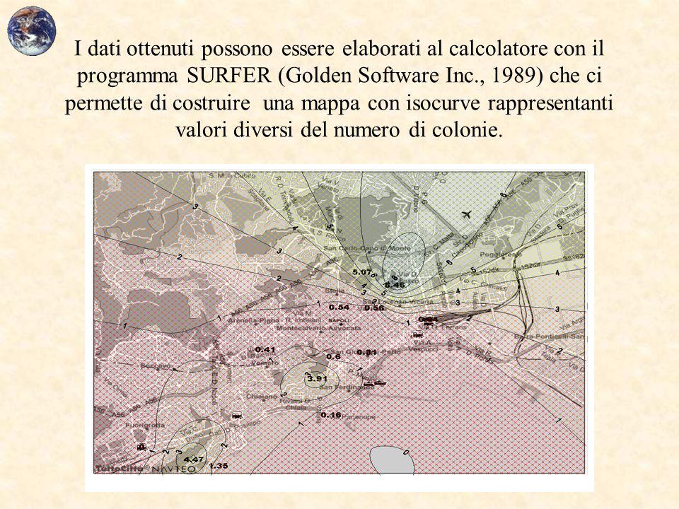 I dati ottenuti possono essere elaborati al calcolatore con il programma SURFER (Golden Software Inc., 1989) che ci permette di costruire una mappa con isocurve rappresentanti valori diversi del numero di colonie.