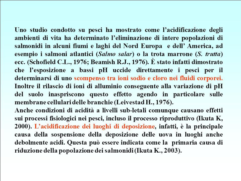 Uno studio condotto su pesci ha mostrato come l'acidificazione degli ambienti di vita ha determinato l'eliminazione di intere popolazioni di salmonidi in alcuni fiumi e laghi del Nord Europa e dell' America, ad esempio i salmoni atlantici (Salmo salar) o la trota marrone (S. trutta) ecc. (Schofield C.L., 1976; Beamish R.J., 1976). È stato infatti dimostrato che l'esposizione a bassi pH uccide direttamente i pesci per il determinarsi di uno scompenso tra ioni sodio e cloro nei fluidi corporei. Inoltre il rilascio di ioni di alluminio conseguente alla variazione di pH del suolo inaspriscono questo effetto agendo in particolare sulle membrane cellulari delle branchie (Leivestad H., 1976).