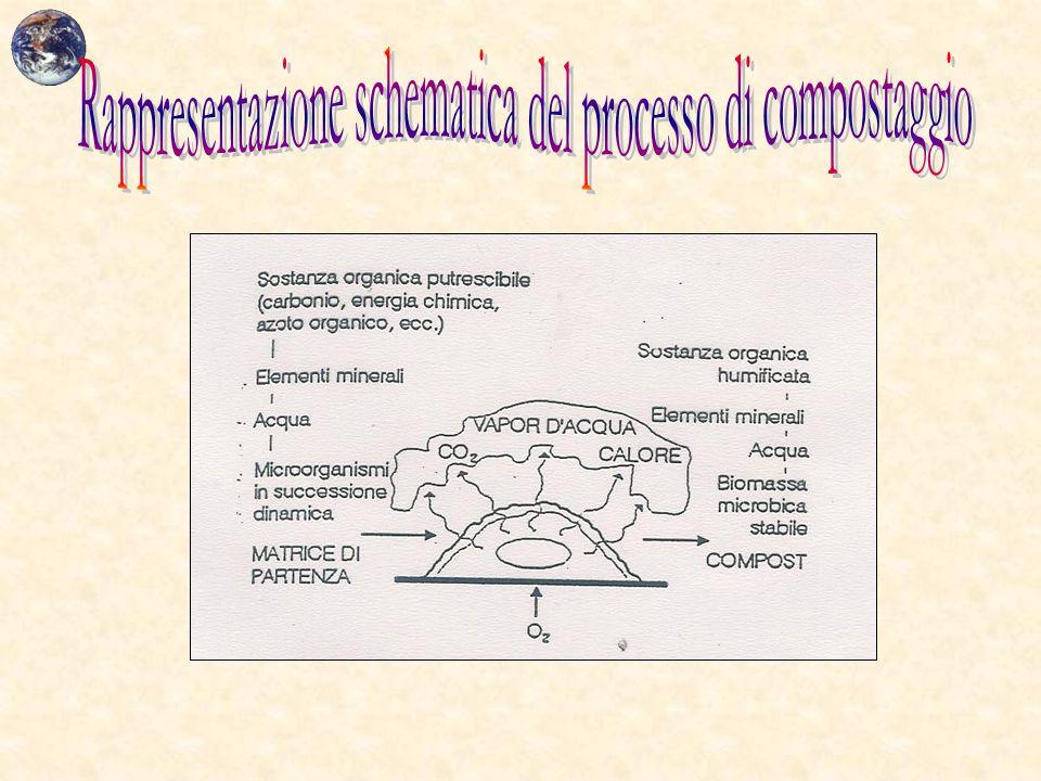 Rappresentazione schematica del processo di compostaggio