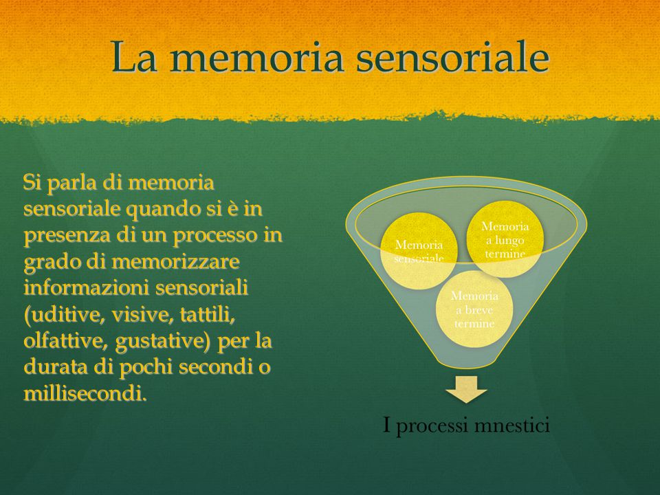 La memoria sensoriale