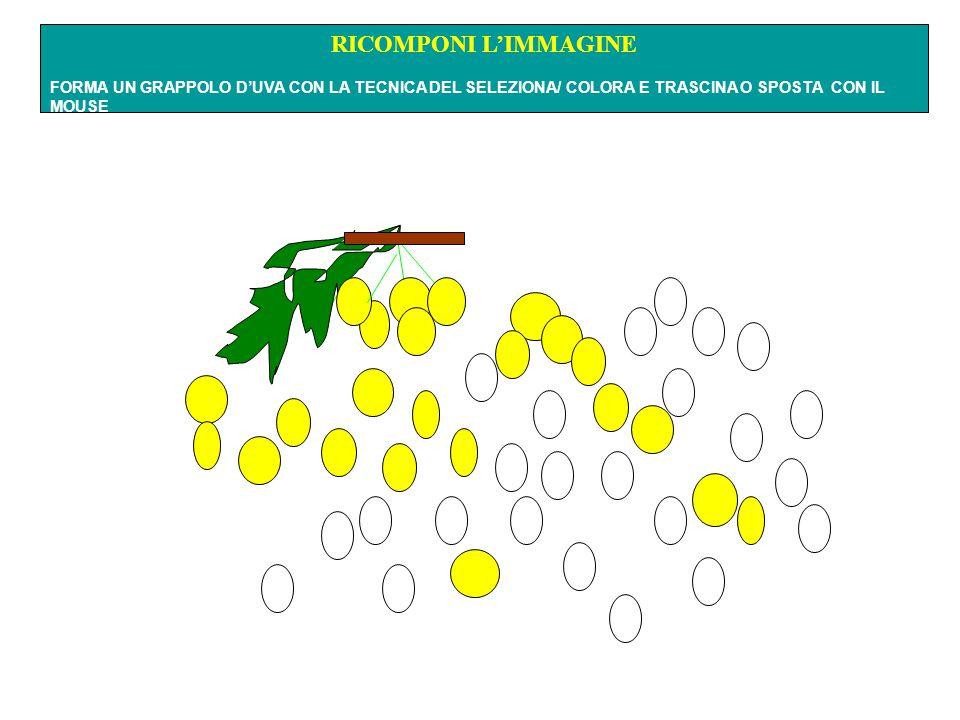 RICOMPONI L'IMMAGINE FORMA UN GRAPPOLO D'UVA CON LA TECNICA DEL SELEZIONA/ COLORA E TRASCINA O SPOSTA CON IL MOUSE.