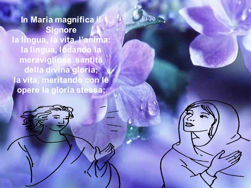 In Maria magnifica il Signore la lingua, la vita, l'anima: la lingua, lodando la meravigliosa santità della divina gloria; la vita, meritando con le opere la gloria stessa;