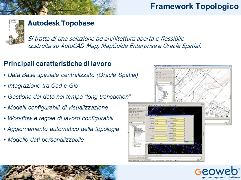 Framework Topologico Autodesk Topobase