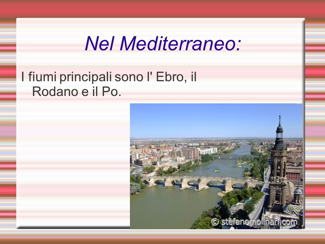 Nel Mediterraneo: I fiumi principali sono l Ebro, il Rodano e il Po.