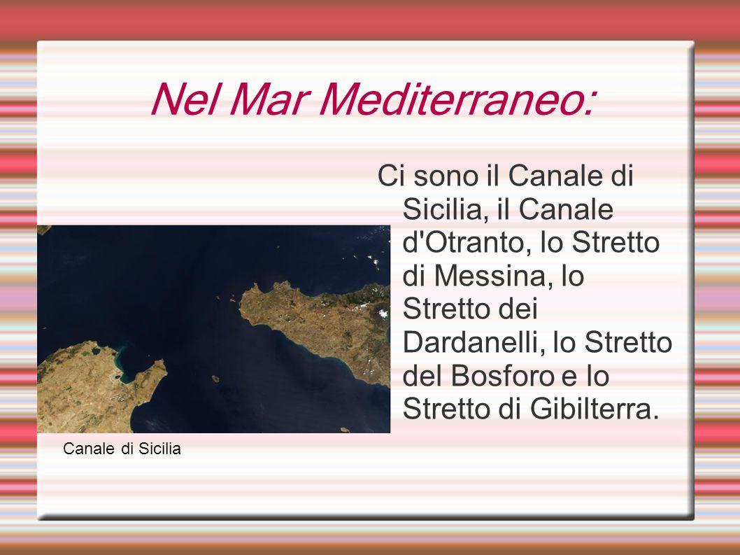 Nel Mar Mediterraneo: