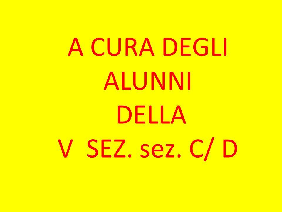 A CURA DEGLI ALUNNI DELLA V SEZ. sez. C/ D