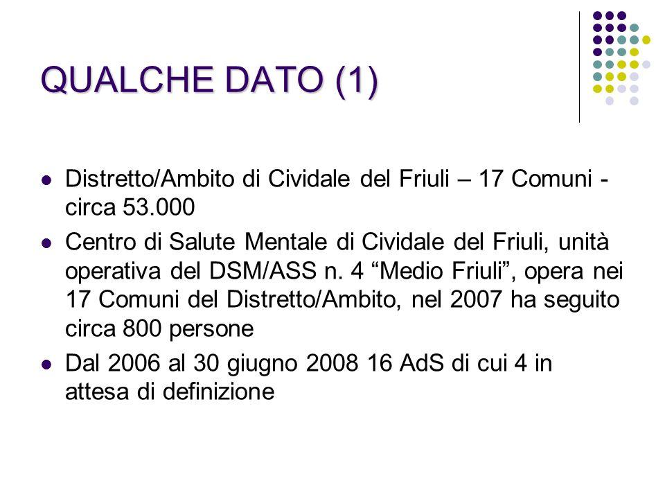 QUALCHE DATO (1) Distretto/Ambito di Cividale del Friuli – 17 Comuni - circa 53.000.