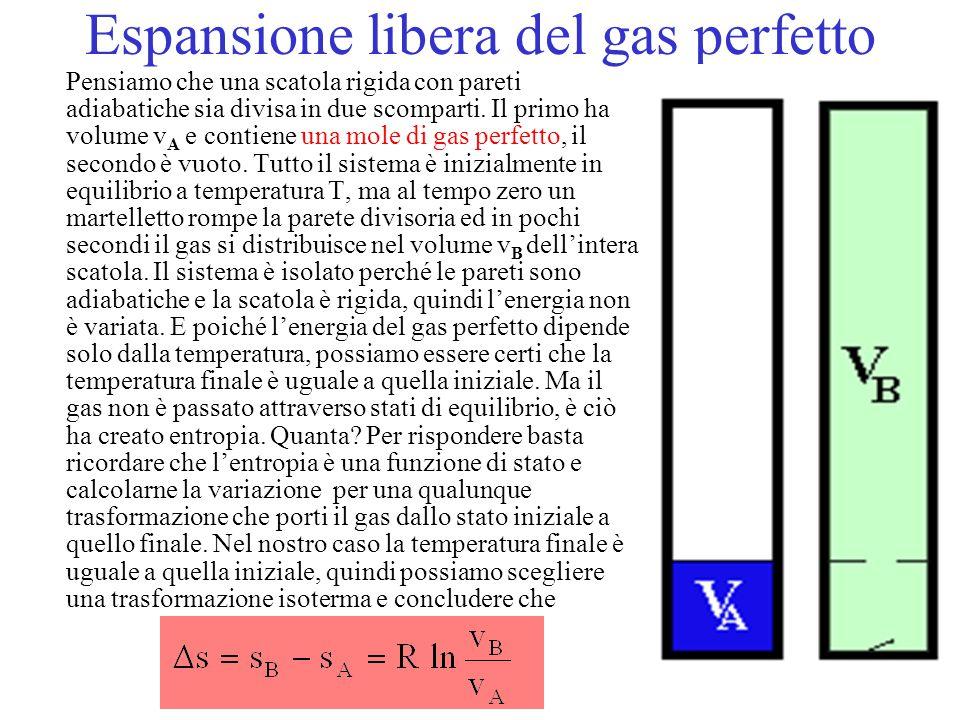 Espansione libera del gas perfetto