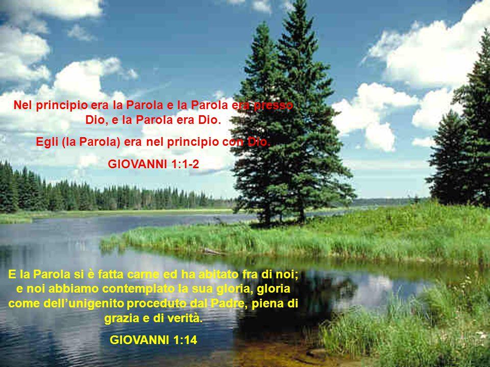 Egli (la Parola) era nel principio con Dio.