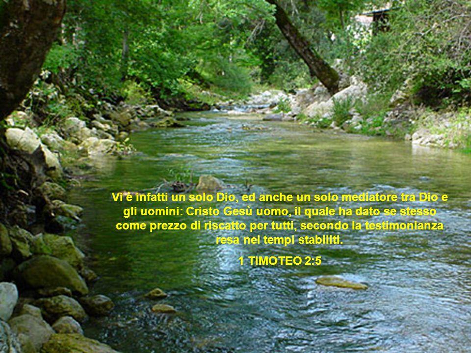 Vi è infatti un solo Dio, ed anche un solo mediatore tra Dio e gli uomini: Cristo Gesù uomo, il quale ha dato se stesso come prezzo di riscatto per tutti, secondo la testimonianza resa nei tempi stabiliti.