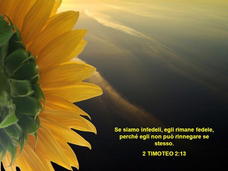 Se siamo infedeli, egli rimane fedele, perché egli non può rinnegare se stesso.