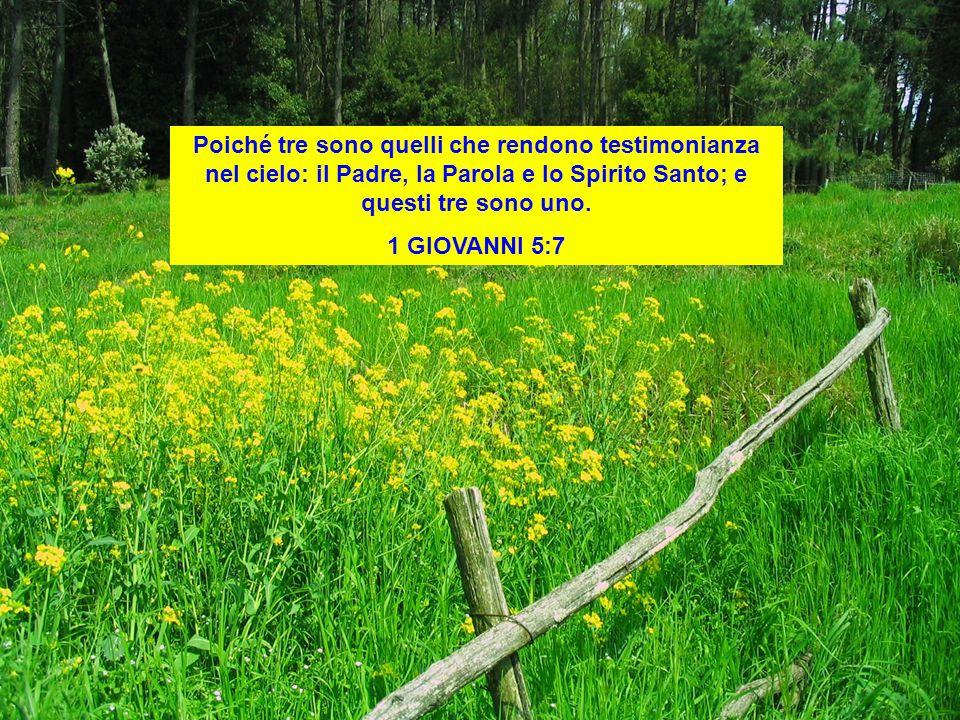 Poiché tre sono quelli che rendono testimonianza nel cielo: il Padre, la Parola e lo Spirito Santo; e questi tre sono uno.