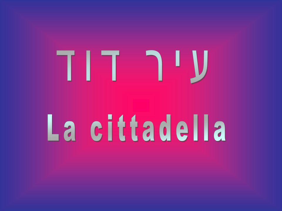 עיר דוד La cittadella