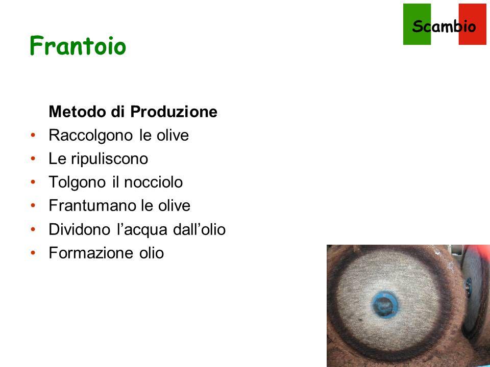 Frantoio Metodo di Produzione Raccolgono le olive Le ripuliscono