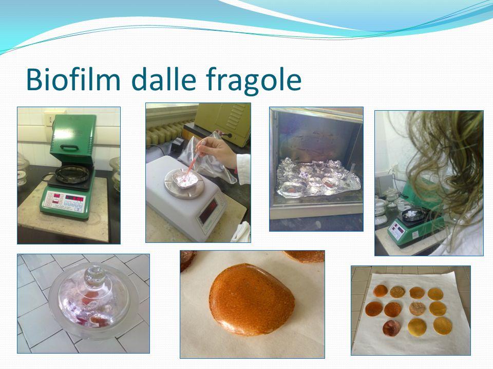 Biofilm dalle fragole