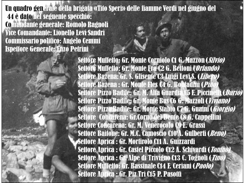 Un quadro generale della brigata «Tito Speri» delle fiamme Verdi nel giugno del '44 è dato nel seguente specchio: