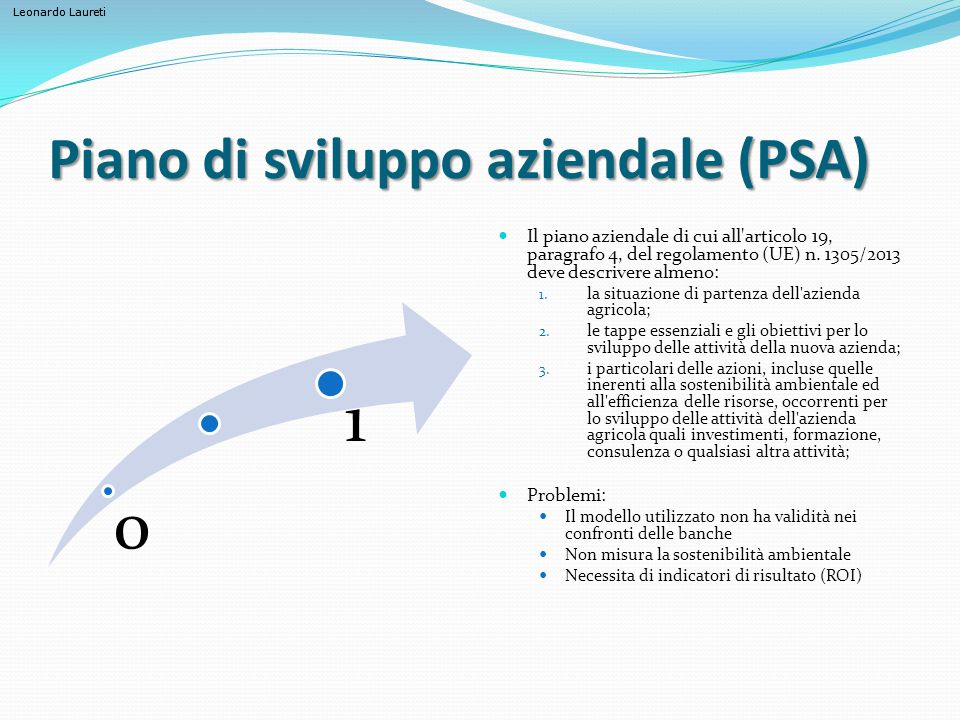 Piano di sviluppo aziendale (PSA)