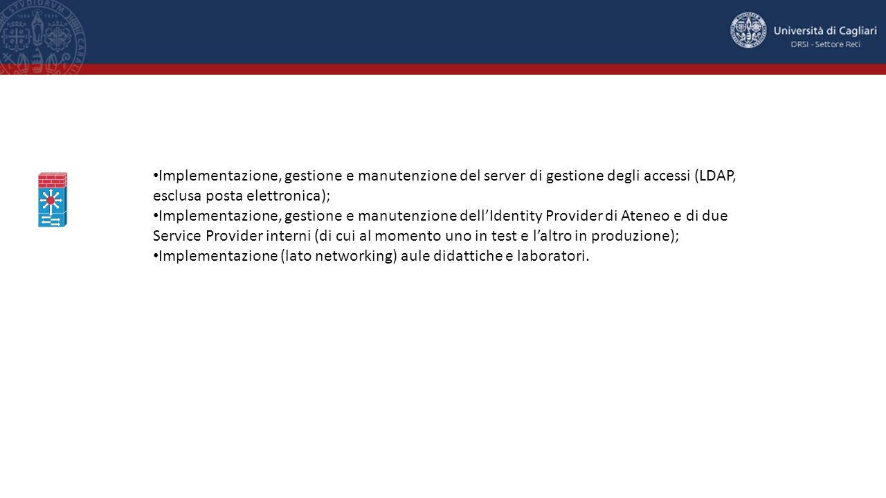 Implementazione, gestione e manutenzione del server di gestione degli accessi (LDAP, esclusa posta elettronica);