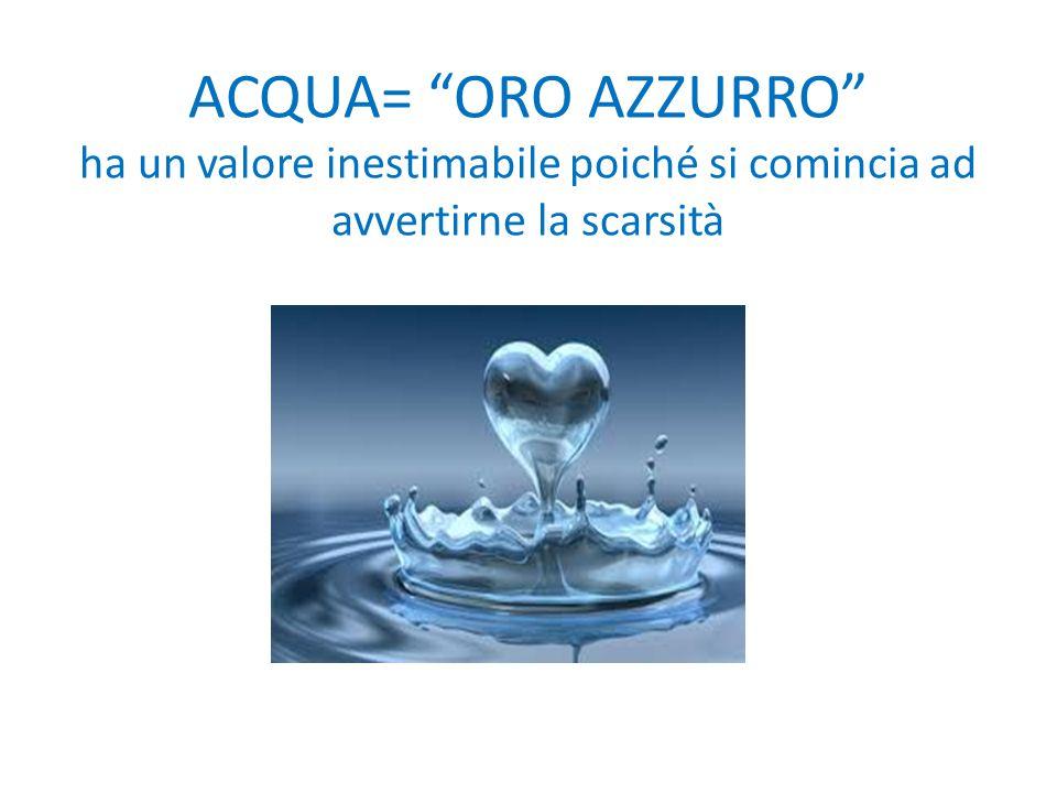 ACQUA= ORO AZZURRO ha un valore inestimabile poiché si comincia ad avvertirne la scarsità