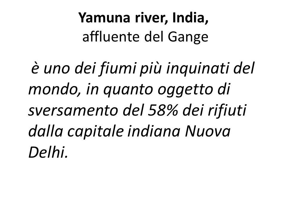 Yamuna river, India, affluente del Gange