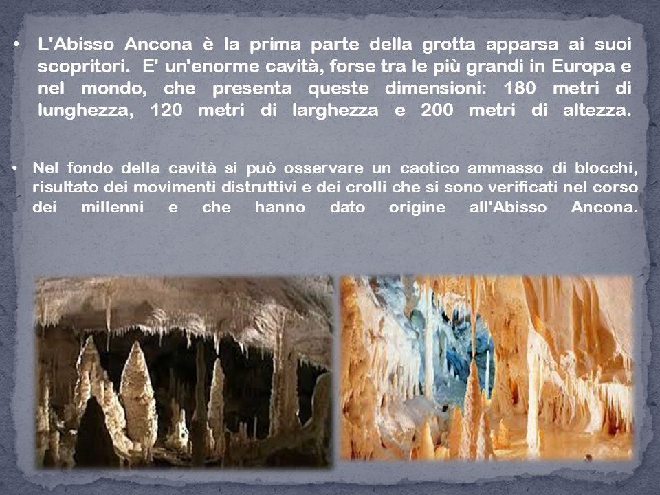 L Abisso Ancona è la prima parte della grotta apparsa ai suoi scopritori. E un enorme cavità, forse tra le più grandi in Europa e nel mondo, che presenta queste dimensioni: 180 metri di lunghezza, 120 metri di larghezza e 200 metri di altezza.