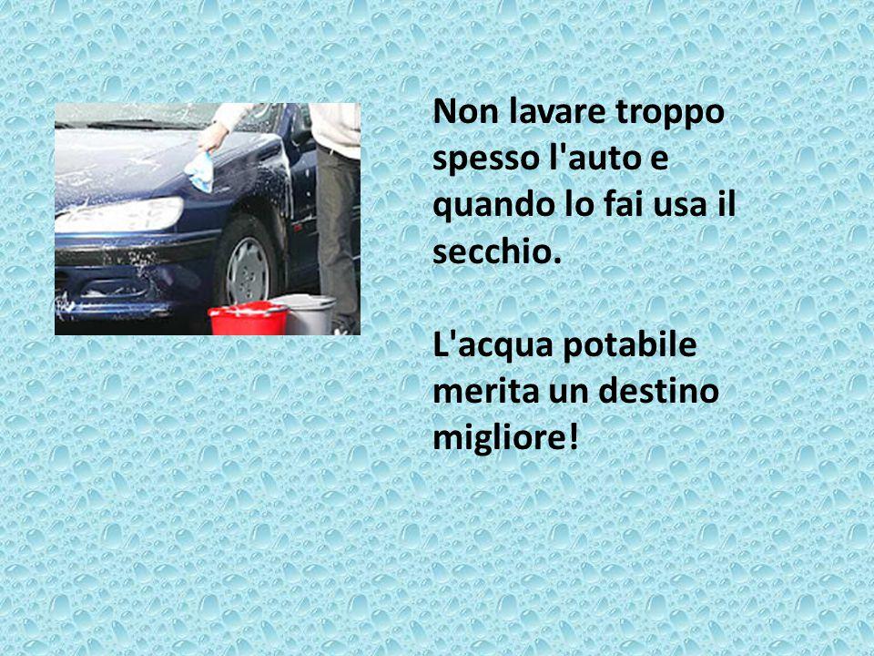 Non lavare troppo spesso l auto e quando lo fai usa il secchio.