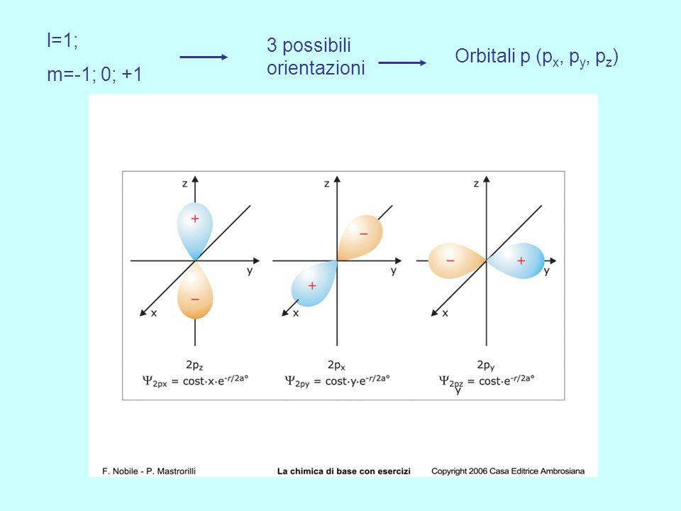 l=1; m=-1; 0; +1 3 possibili orientazioni Orbitali p (px, py, pz)
