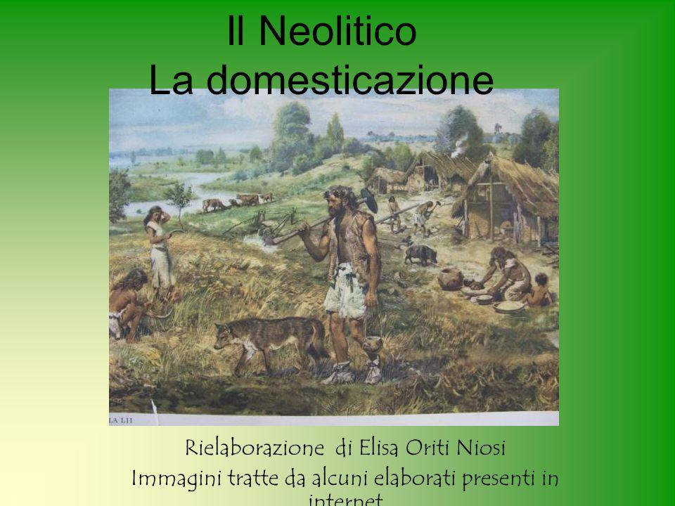 Il Neolitico La domesticazione