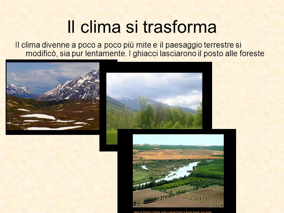 Il clima si trasforma