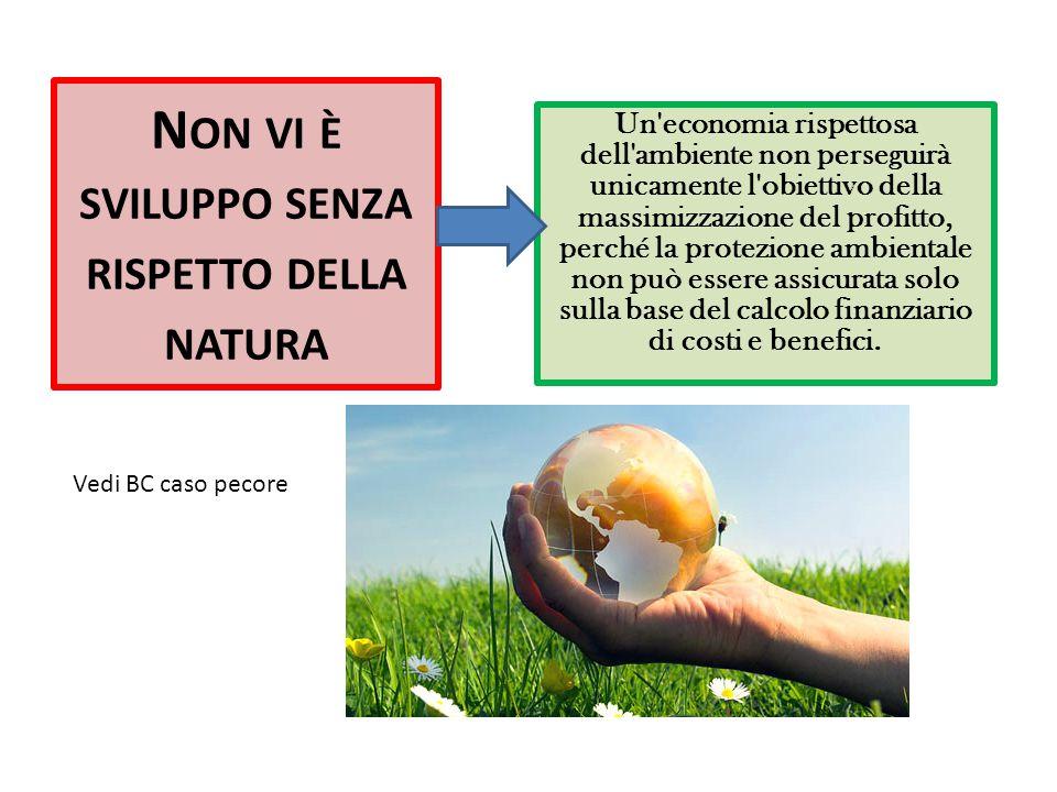 Non vi è sviluppo senza rispetto della natura