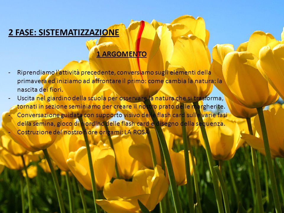 2 FASE: SISTEMATIZZAZIONE