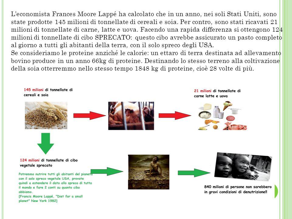 L'economista Frances Moore Lappé ha calcolato che in un anno, nei soli Stati Uniti, sono state prodotte 145 milioni di tonnellate di cereali e soia. Per contro, sono stati ricavati 21 milioni di tonnellate di carne, latte e uova. Facendo una rapida differenza si ottengono 124 milioni di tonnellate di cibo SPRECATO: questo cibo avrebbe assicurato un pasto completo al giorno a tutti gli abitanti della terra, con il solo spreco degli USA.