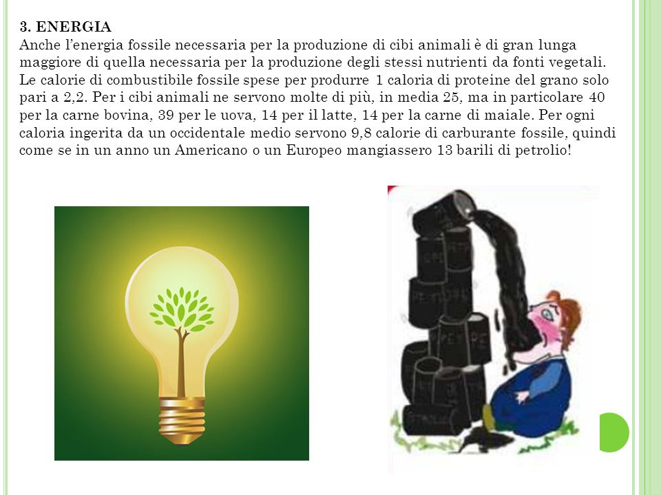 3. ENERGIA Anche l'energia fossile necessaria per la produzione di cibi animali è di gran lunga maggiore di quella necessaria per la produzione degli stessi nutrienti da fonti vegetali.