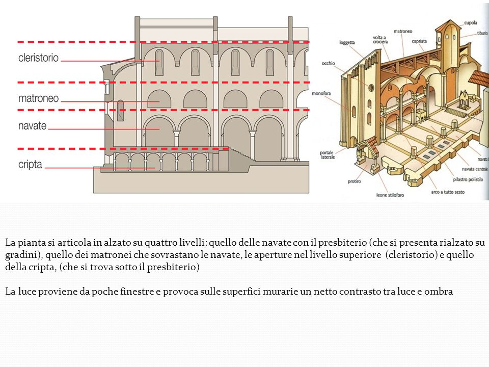 La pianta si articola in alzato su quattro livelli: quello delle navate con il presbiterio (che si presenta rialzato su gradini), quello dei matronei che sovrastano le navate, le aperture nel livello superiore (cleristorio) e quello della cripta, (che si trova sotto il presbiterio)