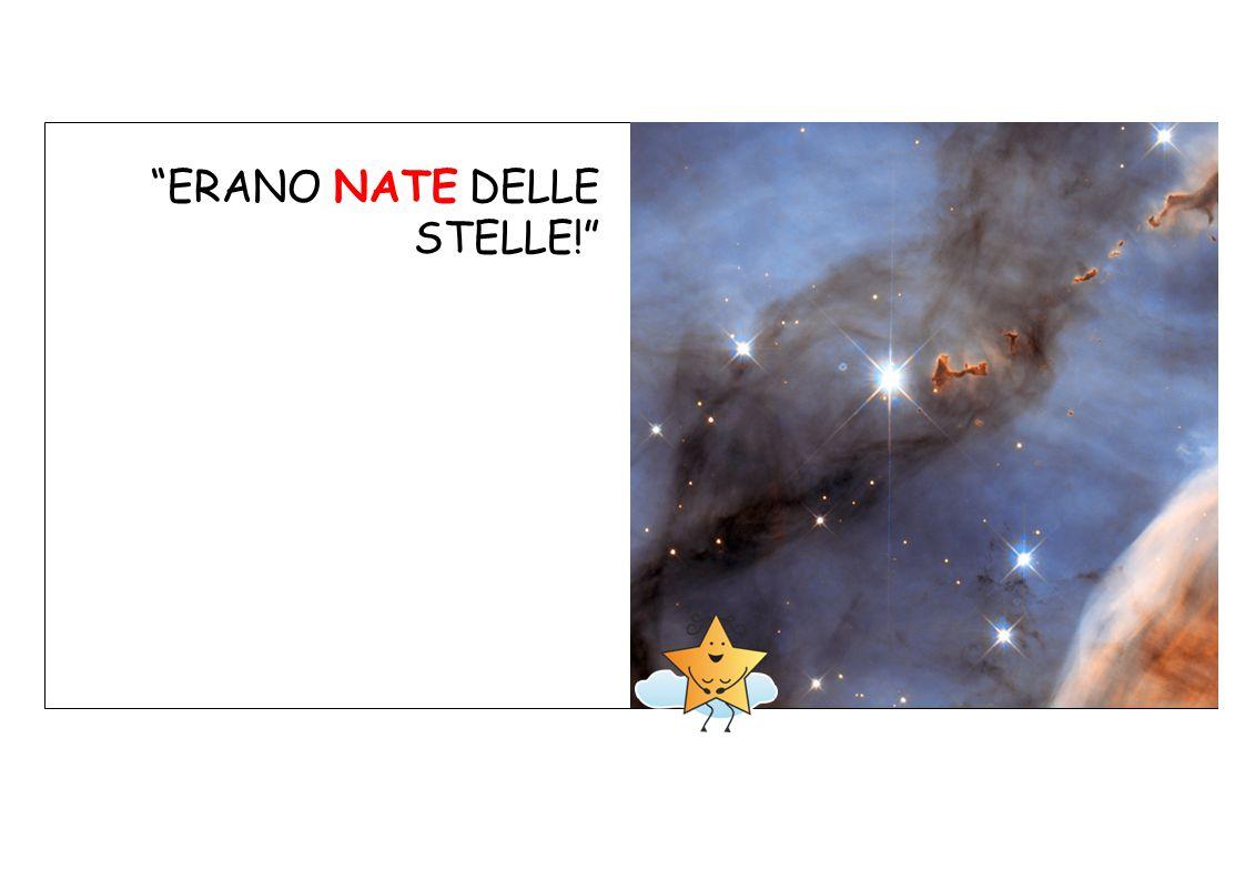 ERANO NATE DELLE STELLE!