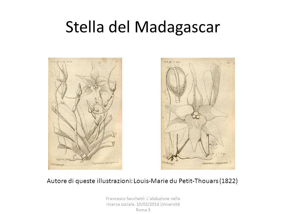 Stella del Madagascar Autore di queste illustrazioni: Louis-Marie du Petit-Thouars (1822)