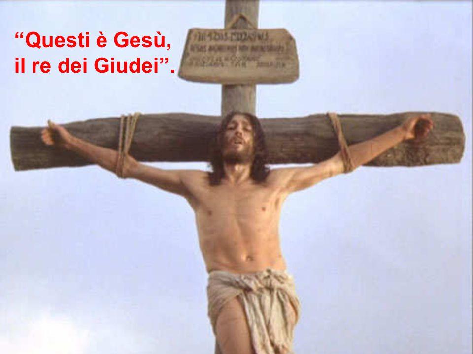 Questi è Gesù, il re dei Giudei .