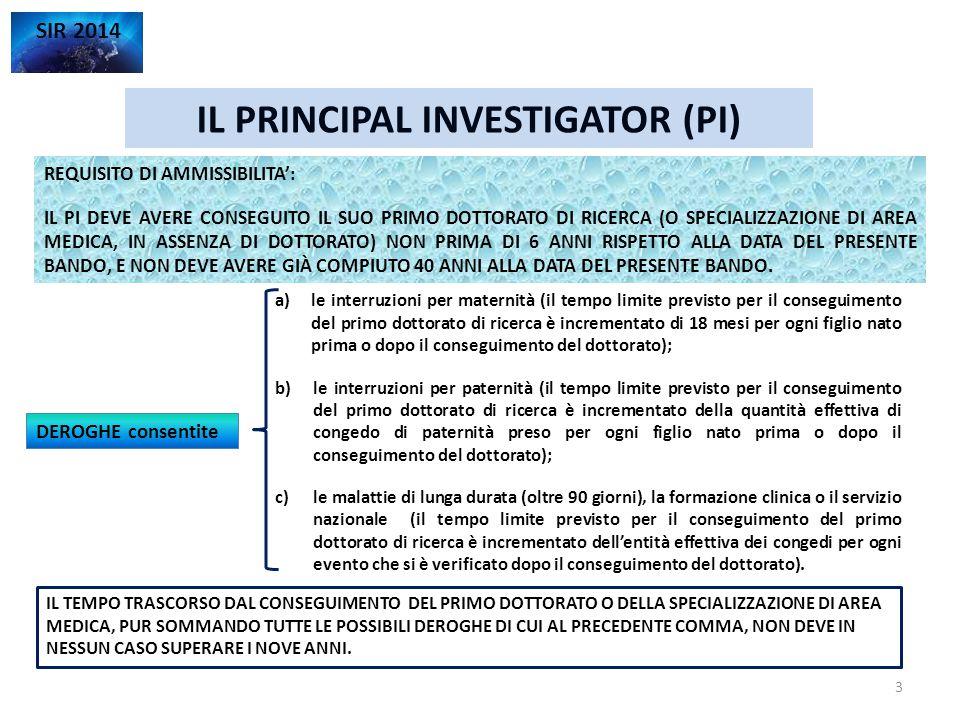 IL PRINCIPAL INVESTIGATOR (PI)