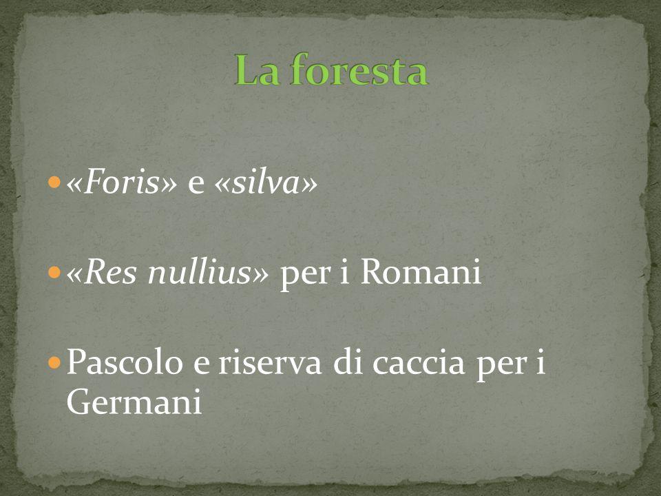 La foresta «Foris» e «silva» «Res nullius» per i Romani