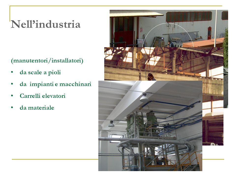 Nell'industria (manutentori/installatori) da scale a pioli
